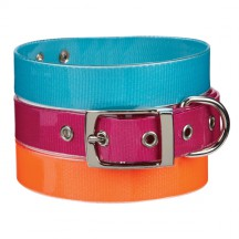 Guardian Gear Waterproof Dog Collar